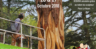 Festival de la Forêt et du Bois avec Astérix et Obélix