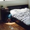 Echange de maison ou couchsurfing