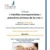 Colloque Familles monoparentales : premières victimes de la crise, 15 nov. 2012 à Paris