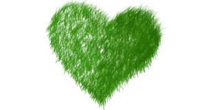 Le divorce a un impact négatif sur l'environnement