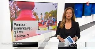 Pension alimentaire : qui va la payer ? sur France 2 le 23 janvier 2014