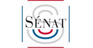 Rapport du Sénat : Familles monoparentales et familles recomposées, un défi pour la société français