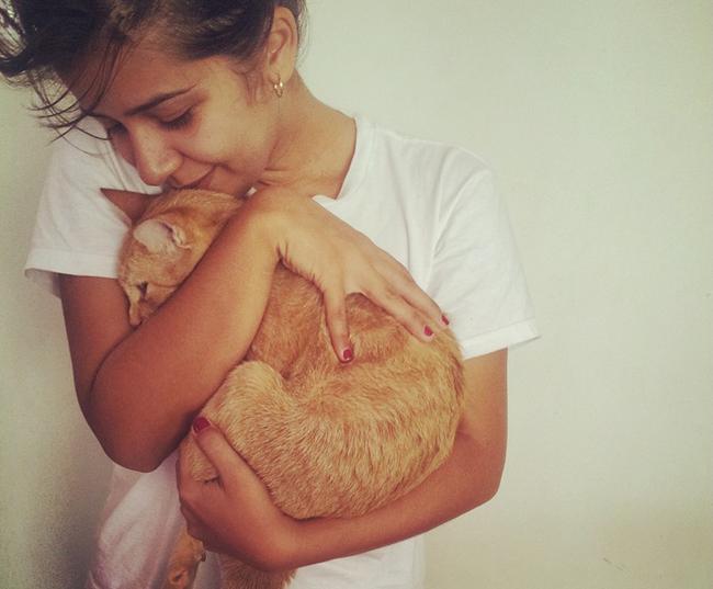 enfant et attachement au chat