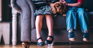 Qui garde l'animal de compagnie en cas de divorce ?