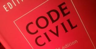 Dénoncer l'article 233 du Code Civil