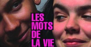 Dico ado : Les Mots de la vie de Catherine Dolto-Tolitch